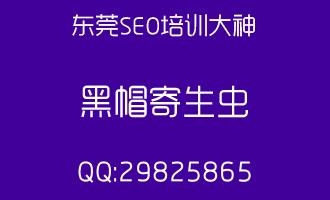 【seo推广论坛】黑帽SEO知识|网站排名|百度优化